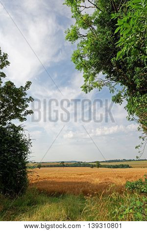 View over the farmland of the Lincolnshire WoldsUK in summer