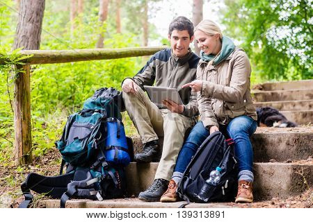 Woman and man hiking in woods determinating their position by GPS on tablet PC