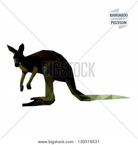 Kangaroo polygon vector on white color background