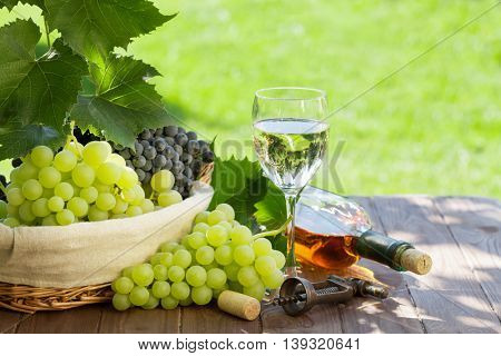 White wine bottle and glass, red and white grape on garden table. View with copy space
