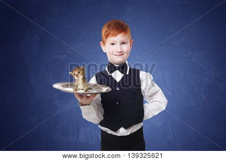 Little waiter stands with gray kitten on a tray. Smiling redhead child boy in suit gives pet present at blue background