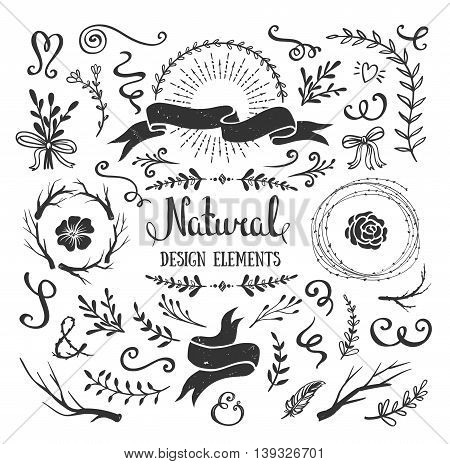 Vintage graphic set of flowers branches leafs and rustic design elements. Isolated floral shapes for crafting bouquets frames borders. Vector illustration