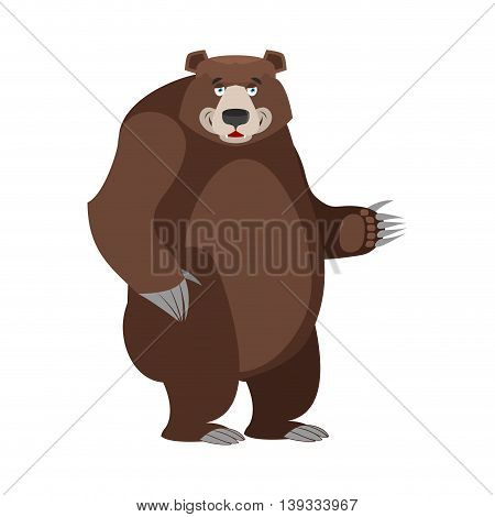 Bear In White Background. Good Happy Wild Animal. Forest Beastl With Brown Fur. Big Grizzly Isolated