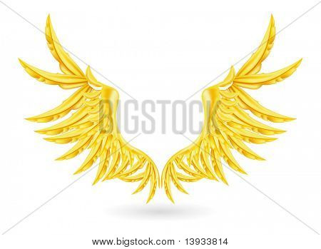 Gold Wings, vector