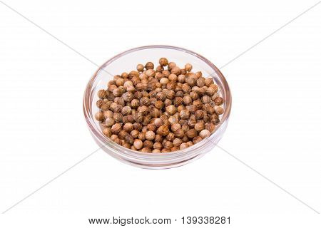 Coriander seeds on a bowl on a white background