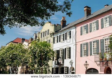 Colorful houses on treed street in Charleston, South Carolina