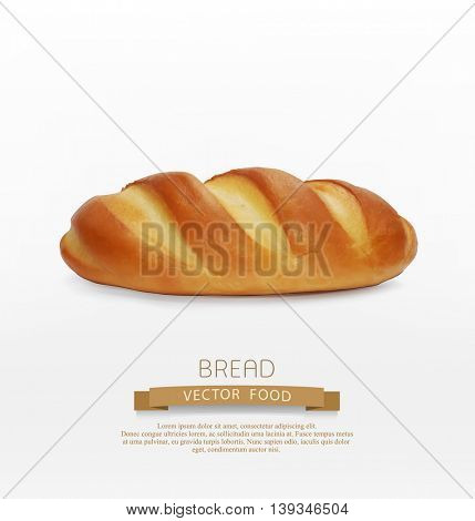 vector bread (loaf) isolated on white background