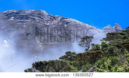 Peaks of Mt. Kinabalu seen through twisted alpine trees growing at high altitude.