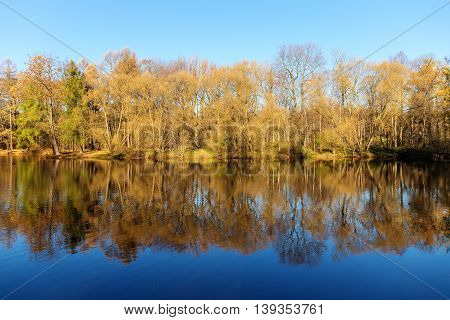 autumn landscape with reflections of trees in water