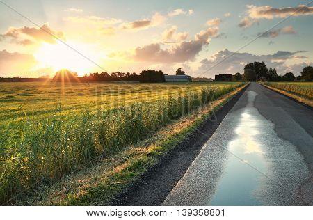 morning sunshine over road in Dutch farmland Netherlands