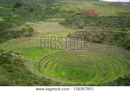 Moray without a single person all green