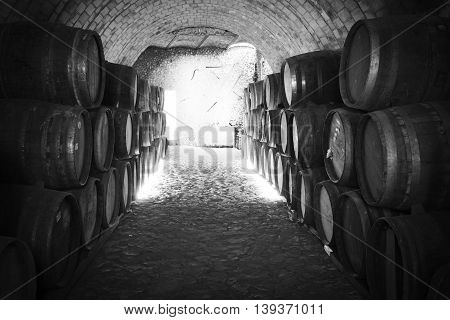 Wine barrels stacked in the old cellar of the winery. Balck and white