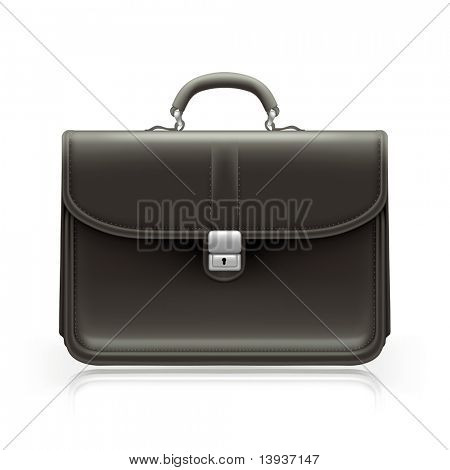 Brief case, bitmap copy