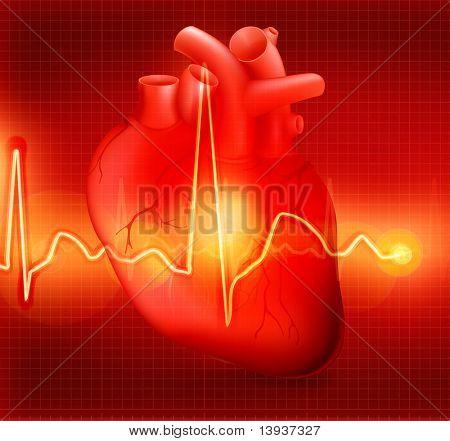 Heart cardiogram, eps10