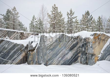 Trees, growing on rocks Marble quarry, gloomy january day. Ruskeala, Karelia