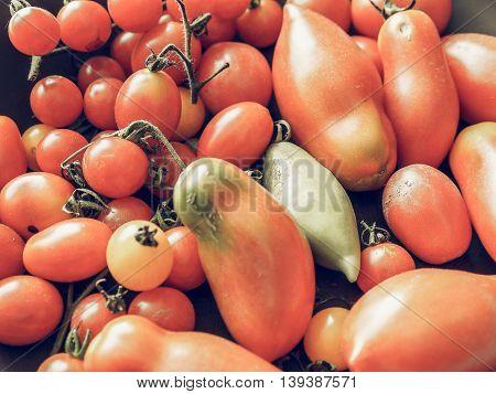 Tomato Vegetable Vintage Desaturated