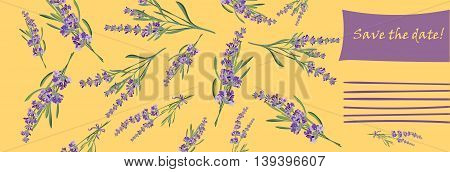 Invitation cards with flower frame Lavender Vector illustration