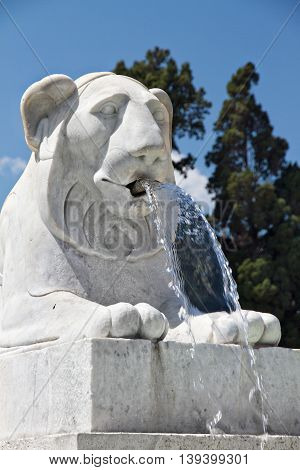 The lion fountain in summer at Piazzale Roma, Italy