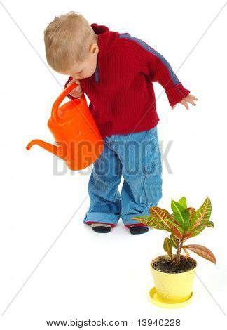 5 years old boy plays with garden  toy tools