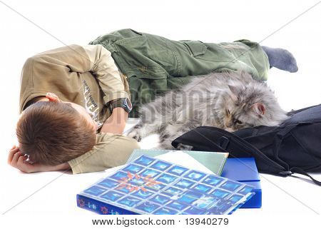 Young boy fell asleep after hard studying with cat