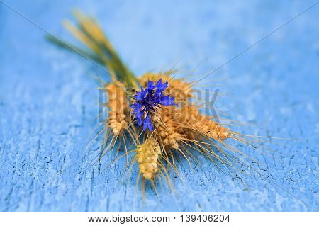 flower cornflower, and corn bread laying on blue painted wooden surface