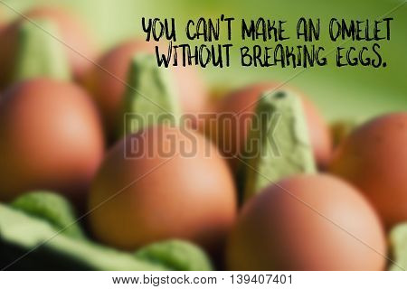 You can't make an omelet without breaking eggs English saying illustrated