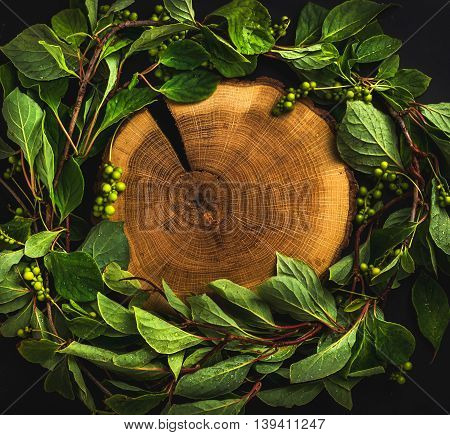 Background with Schisandra chinensis wreath around wooden board on dark, top view, copy space, square crop