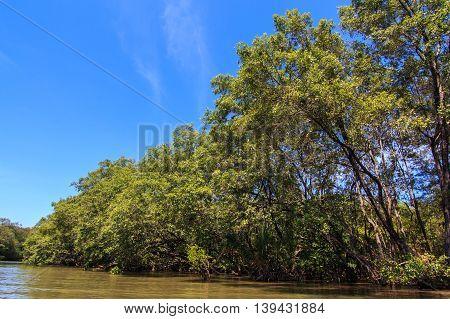 magnificent scenic route along Shahbandar Tuaran River, Sabah, Malaysia