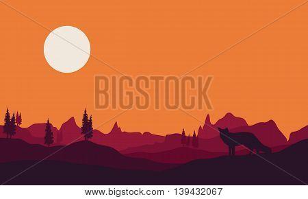 Silhouette of fox in hills a beautiful landscape