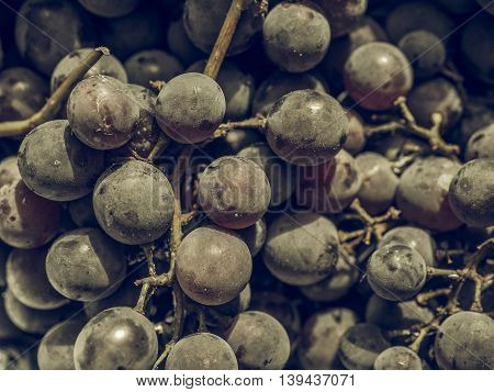 Red Grape Fruits Vintage Desaturated