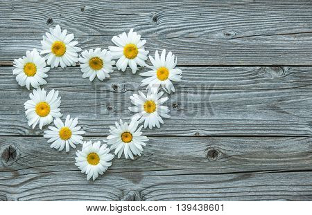 Daisy flowers in heart shape on old wooden board