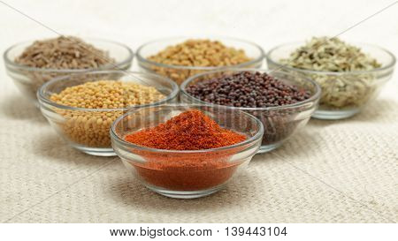 Different types of Indian spices in glass bowl, focus on red chili powder on jute mat background. Front view.