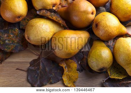 Juicy Ripe Pears With Dried Leaves