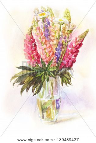 watercolor bouquet of lupines in a glass vase hand-drawn illustration