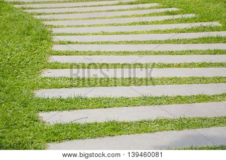 cement plate on green grass in nature garden