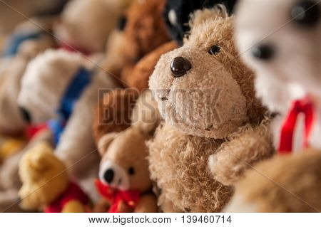 Collection of teddy bears and other plush toys.