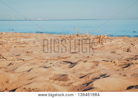 Blurred abstract sandy beach background with sunlight. Baltic sea in season summer or autumn. Blur coast of the river. Outdoors concept. Place for text copy space.