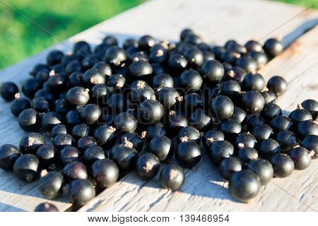 Heap of black currents on wooden bench