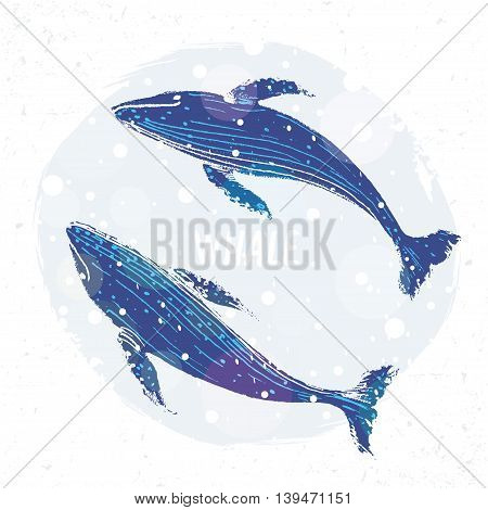 Amazing two grunge whales. Hand Drawn Whales. Vector illustration