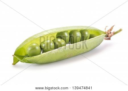 Plant peas are isolated on a white background
