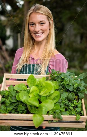 Portrait of happy young female gardener with leaf vegetables in crate at garden
