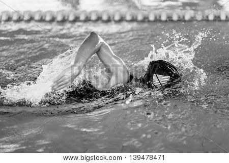 Swimmer in the pool -close up, side view