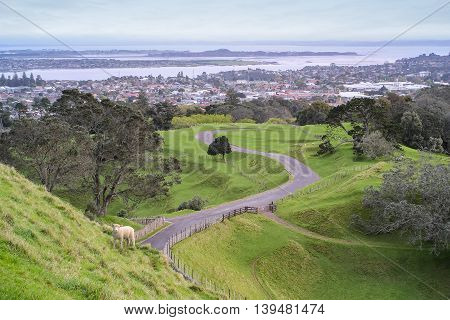 One Tree Hill park in Auckland New Zealand