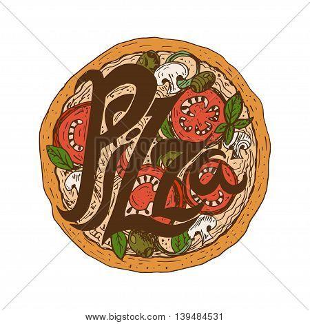 Illustration hand drawn delicious pizza with tomatoes mozzarella champignons oregano pepperoni on and olives. Vector