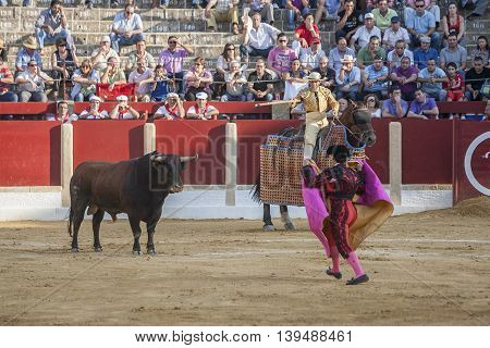 Ubeda Spain - October 1 2011: Picador bullfighter lancer whose job it is to weaken bull's neck muscles in the bullring for Ubeda Spain