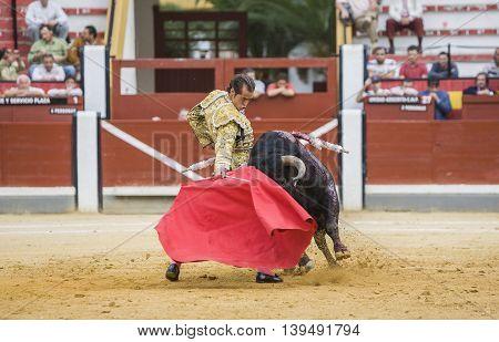 Jaen SPAIN - October 17 2008: Spanish bullfighter Cesar Jimenez in the alley waiting at the paseillo or initial parade bullfight at Jaen bullring Spain