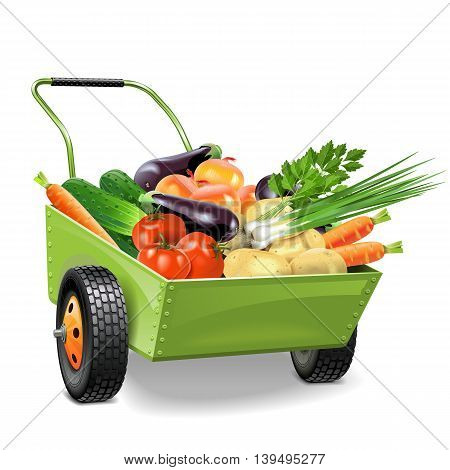 Vector Wheelbarrow with Vegetables isolated on white background