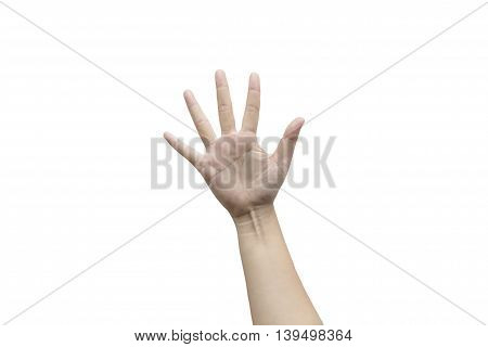 Five fingers isolated on white background. Clipping path