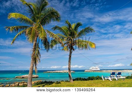 green palm trees on sandy beach coastline near ocean or sea water sunny day outdoor on natural blue sky background