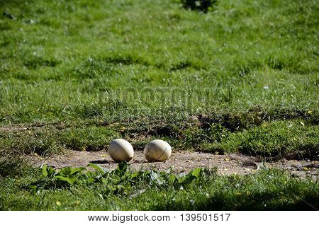 Close Up Of Two Ostrich Eggs